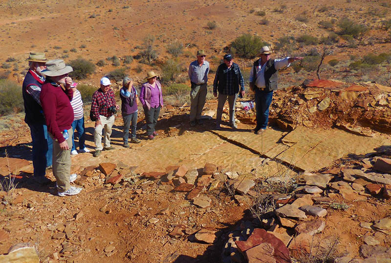 Flinders-Ranges-Geology-Inspecting-fossils